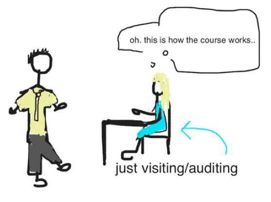 2 visit audit