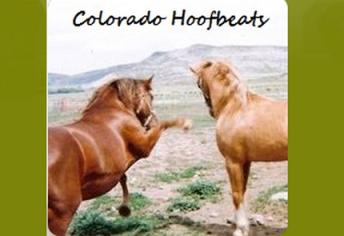 willow co hoofbeats
