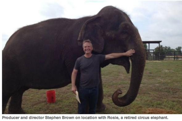 stephen with elephant