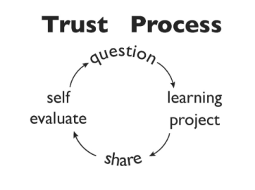 trust process from lisa