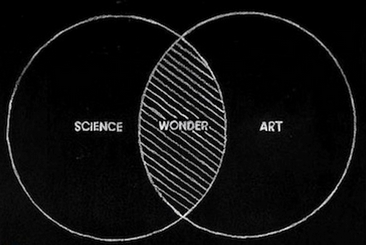 wonder diagram via silva