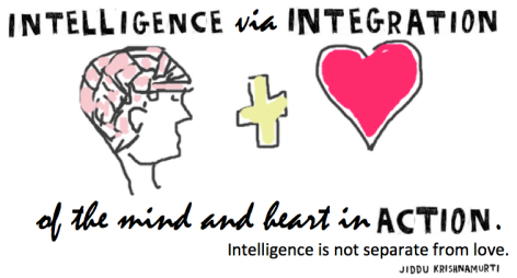 intelligence via integration graphic