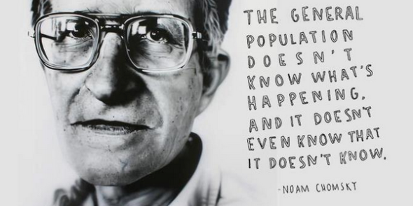 noam chomsky quote 2