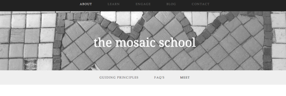 the mosaic school