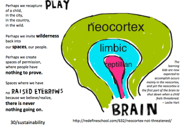 neocortex on grit