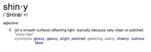 shiny defn