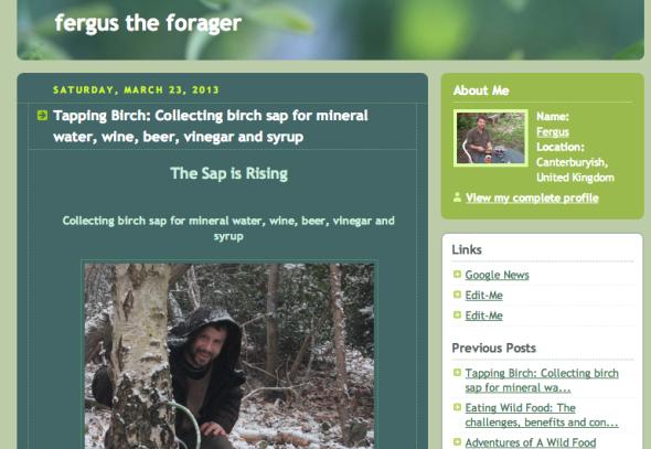 fergus blog