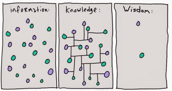 info knowledge wisdom