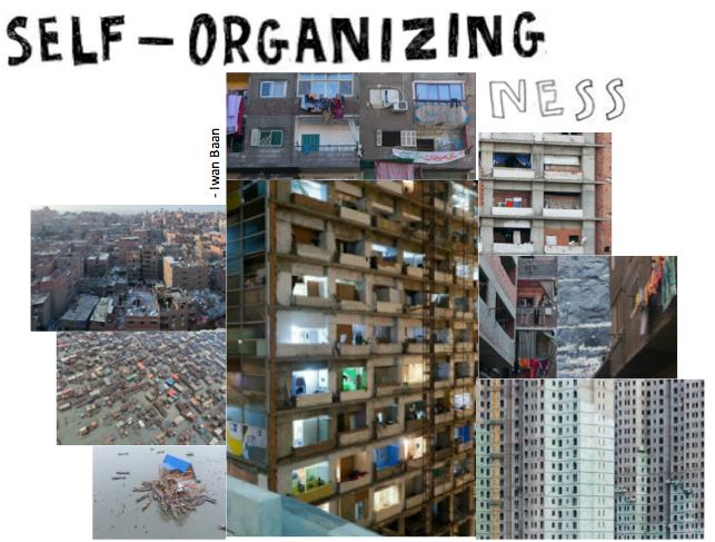 self organizing graphic