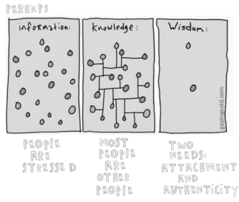 wisdom graphic