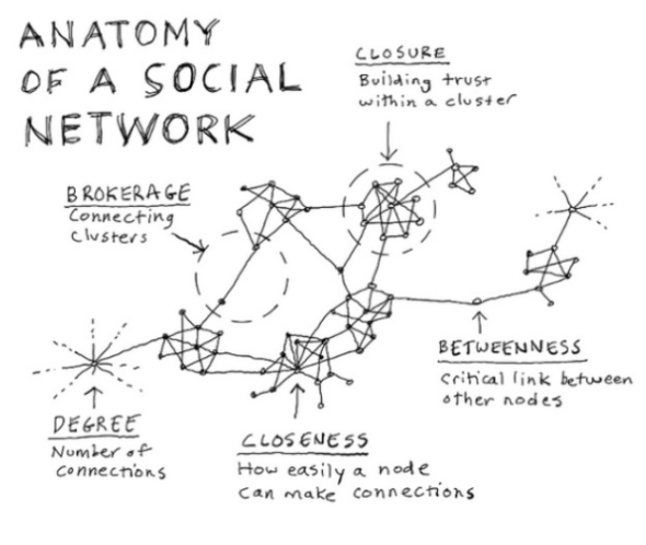 anatomy of a social network d gray